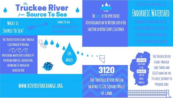 infographic horizontal