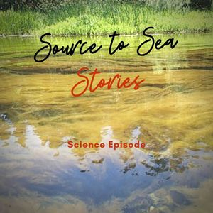 sts stories science 2 2